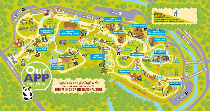 Smithsonian Zoo Map The Smithsonian National Zoo: What To Know Before You Go | A